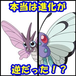 バタフリー モルフォン 進化