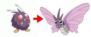 モルフォン 進化