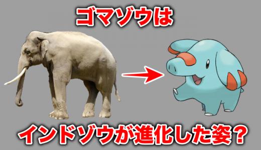 ゴマゾウはインド象が進化した姿?